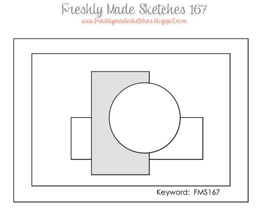 FMS 167 Sketch