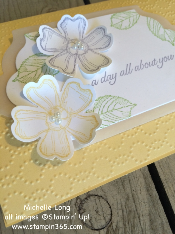 Birthday Blossoms stampin365
