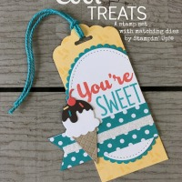 Cool Treats Bundle by Stampin' Up!